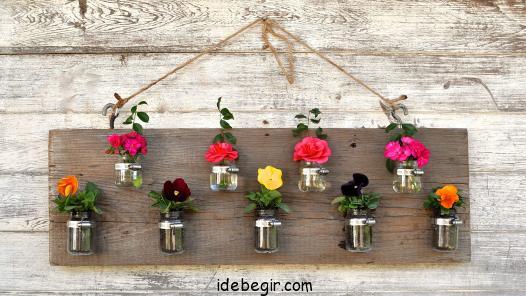 تزئین گیاهان (1)