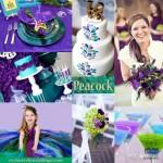 عروسی بنفش (1)