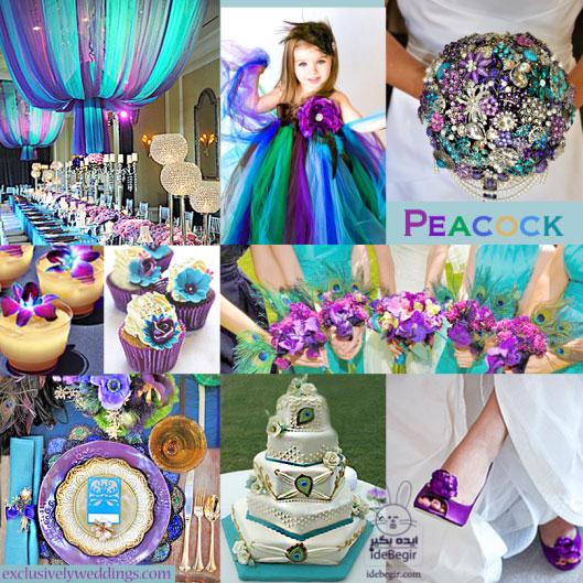 عروسی بنفش (2)