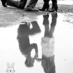 عکس-د.ونفره (7)