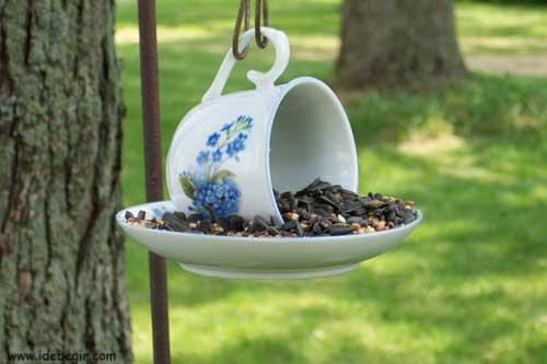 عکس-غذای پرنده (3)