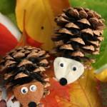 8 ایده با میوه درخت کاج