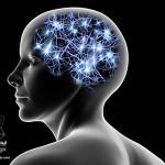 فرکانسهای مغزی