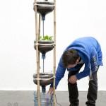 plants-plowers-creativity (3)