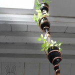 plants-plowers-creativity (7)