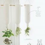 plants-plowers-creativity (8)